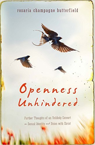 Image for Openness Unhindered: Further Thoughts of an Unlikely Convert on Sexual Identity and Union with Christ