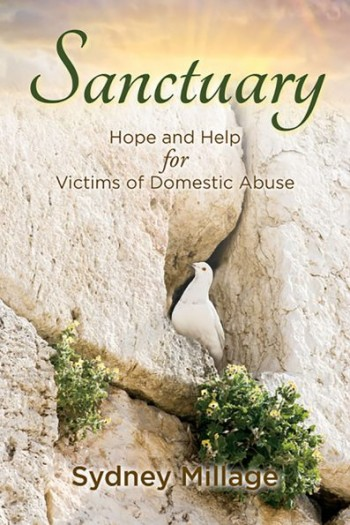 Image for Sanctuary: Hope and Help for Victims of Domestic Abuse