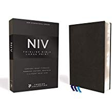 Image for NIV, Thinline Bible, Large Print, Premium Leather, Goatskin, Black, Premier Collection, Comfort Print