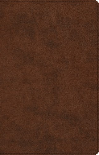 Image for ESV Prayer Bible (TruTone, Brown)